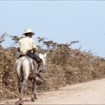 pantanal-vaqueiro