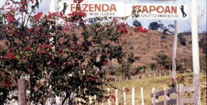 saudade-da-minha-terra-musique-sertaneja